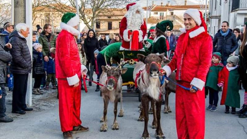 immagine delle renne con elfi e slitta